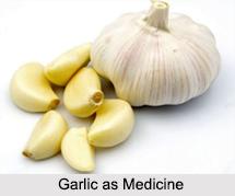 Use of Garlic as Medicines, Classification of Medicine