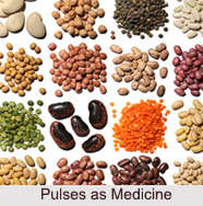 Use of Pulses as Medicines, Classification of Medicine