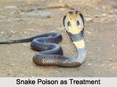 Use of Snake Poison as Treatment