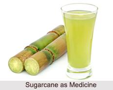 Use of Sugarcane as Medicines, Classification of Medicine