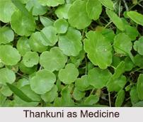 Use of Thankuni as Medicines, Classification of Medicine