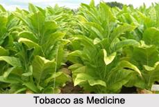Use of Tobacco as Medicines, Classification of Medicine