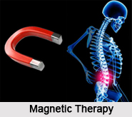 Magnetic Therapy, Indian Naturopathy