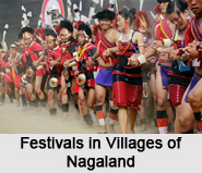 Villages of Nagaland, Villages of India