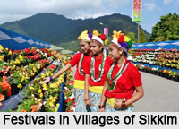 Villages of Sikkim, Villages of India