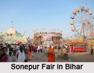 Villages of Bihar, Villages of India
