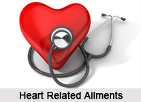 Heart Ailments, Naturopathy