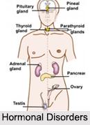 Hormonal Disorders, Naturopathy