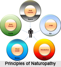 Principles of Naturopathy, Indian Naturopathy