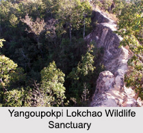 Wildlife Sanctuaries of Manipur