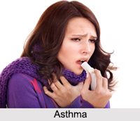 Asthma, Allergic Disease
