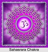 Sahasrara Chakra, Kundalini Chakra