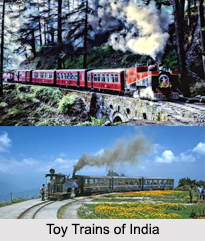 Toy Trains of India, Indian Railways