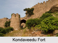 Forts in Telangana, Indian Monuments