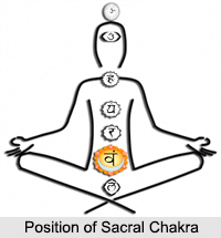 Sacral Chakra, Kundalini Chakras