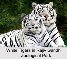Zoos in India