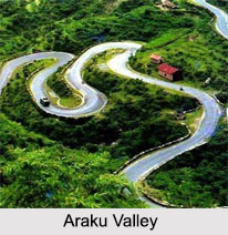 Araku Valley, Andhra Pradesh, Tourism in Andhra Pradesh