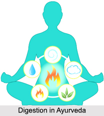 Digestion in Ayurveda, Concepts of Ayurveda