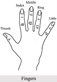 Fingers, Palmistry