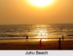 Beaches in Mumbai, Beaches of India