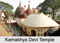 Shakti Peethas in India, Durga Temples in India
