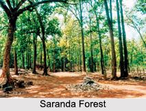 Saranda Forest, Jharkhand, Tourism in Jharkhand
