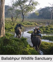 Wildlife Sanctuaries of Eastern India