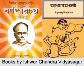 Ishwar Chandra Vidyasagar, Indian Freedom Fighter