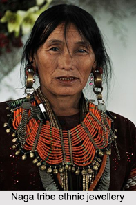 Naga Tribe, Indian Tribals