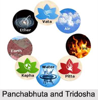 Doshas in Ayurveda, Concepts of Ayurveda