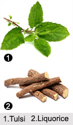 Ayurvedic Herbs, Ayurveda