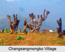 Tuensang District, Districts of Nagaland, States of India