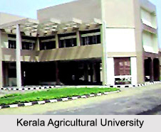 Universities of Kerala, Indian Universities
