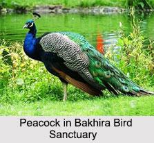 Uttar Pradesh Eco Parks