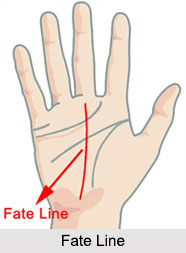 Fate Line, Palmistry