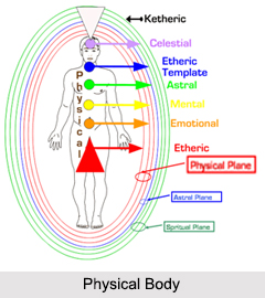 Physical Body, Bodies and Chakras