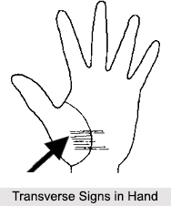 Transverse Signs in Hand, Palmistry