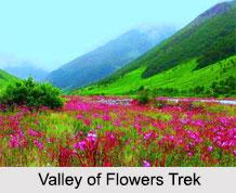 Valley of Flowers Trek, Trekking in India
