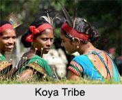 Koya Tribe, Kerala, Indian Tribals