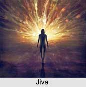 Jiva, Soul