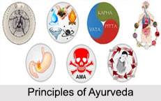 Principles Of Ayurveda