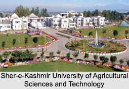 Sher-e-Kashmir University of Agricultural Sciences and Technology, Indian Universities