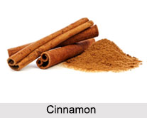 Types of Spice