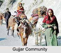 Gujjar Community, Indian Community
