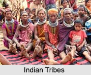Indian Tribal Culture, Indian Tribals