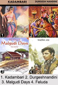 Indian Novels, Indian Literature