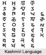 Kashmiri Language, Indian Languages