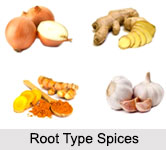 Root Type Spices, Indian Spices