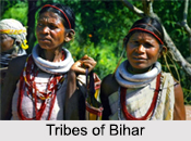 Tribes of Bihar, East Indian Tribes