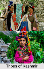 Tribes of Kashmir
